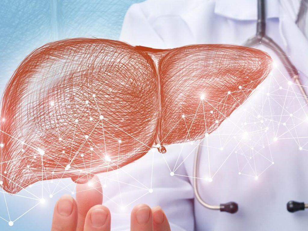 liver-transplant-living-donor